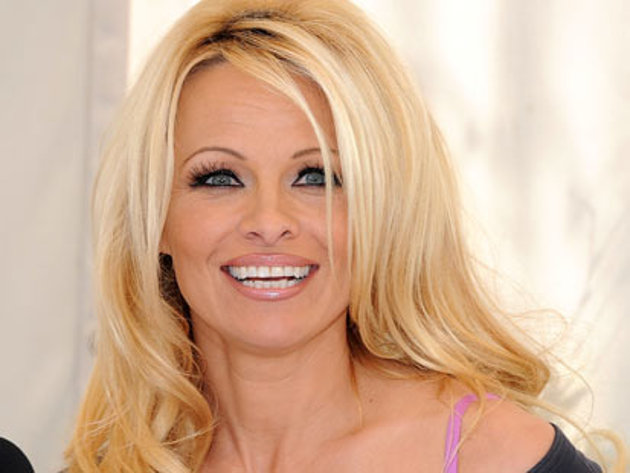 pamela anderson strips down with dog get a news