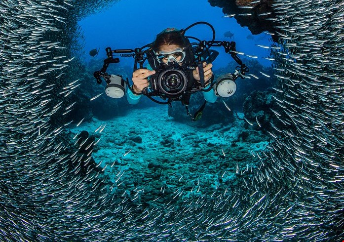 Grand Cayman's Great Shore Diving Adds Value To Dive Packages
