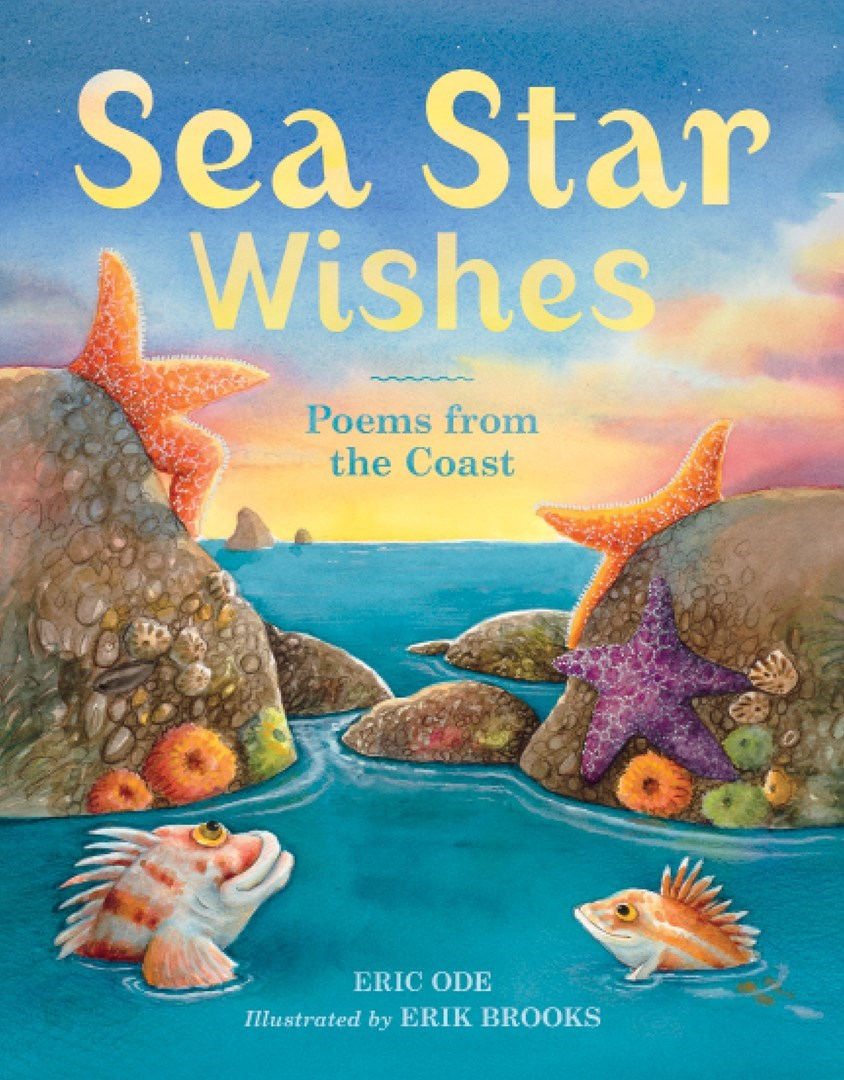 Worksheet Poetry Books For Children sea star wishes poems from the coast sasquatch books april 2013 16 99 is a charming poetry book for children by poet author singersongwr