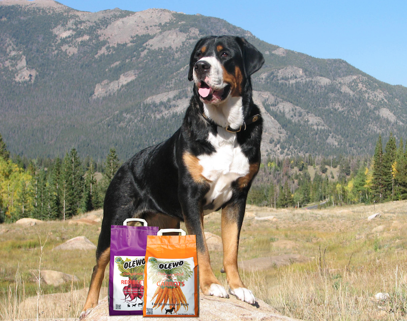 Midwest Dog Club Relies On Olewo Carrots Beets For Their